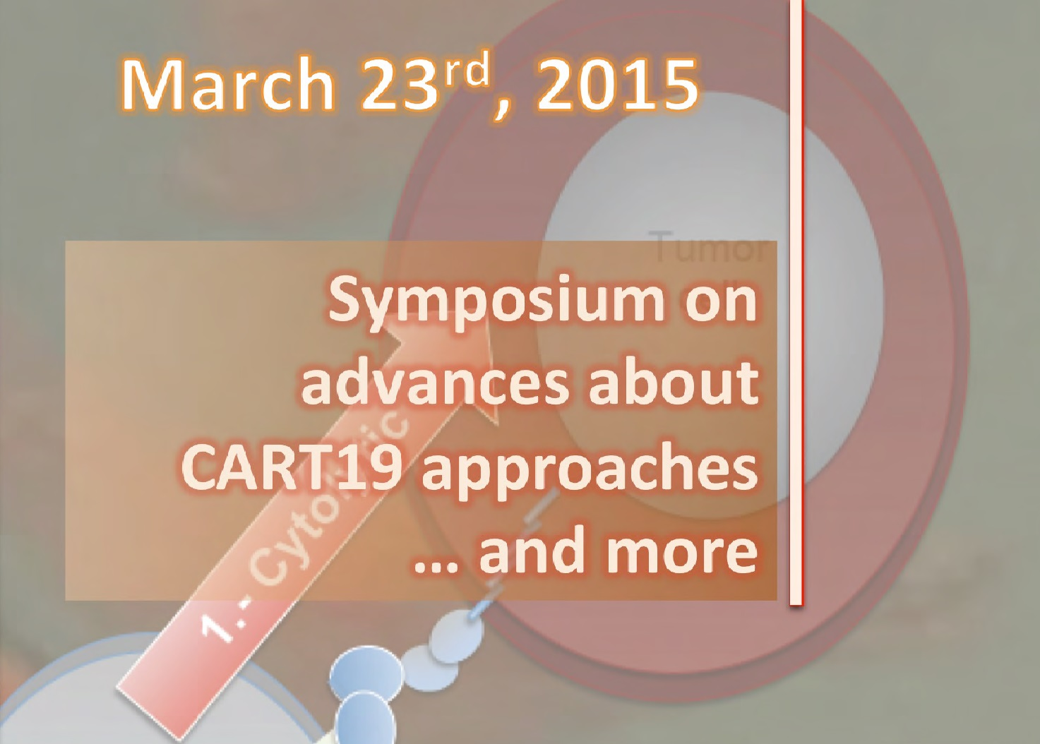 Symposium on advances about CART19 approaches